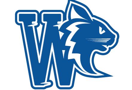Onze nieuwe Wildcats Webshop Online !